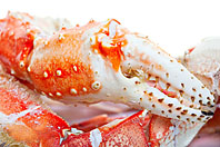 Colossal King Crab Claws
