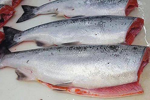 H&G Whole Alaskan Coho Salmon