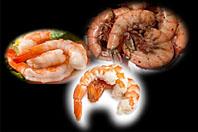 Wild Shrimp Trio