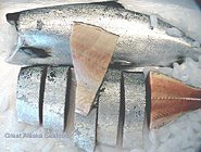 Whole White King Salmon