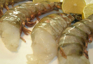 Wild Black Tiger Prawns