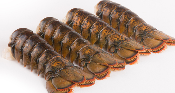North Atlantic Lobster Tails