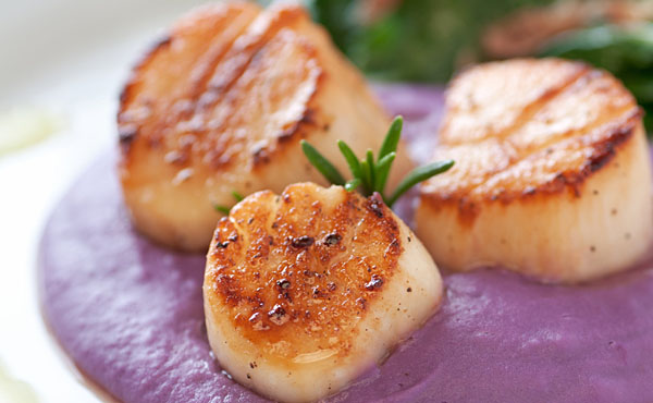 10-20 ct Sea Scallops